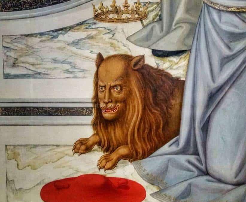 Tra leoni e altri animali