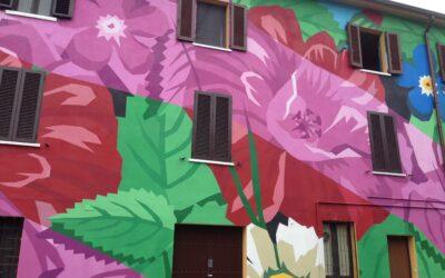 Urban Tour – Street Art Ortica